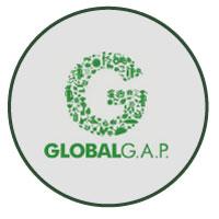 Global-Gap_02